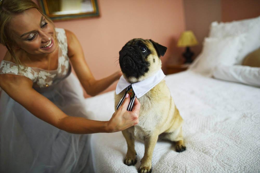 "ОЛЕГ И НАСТЯ ""COOL WEDDING"" фото 17 1"