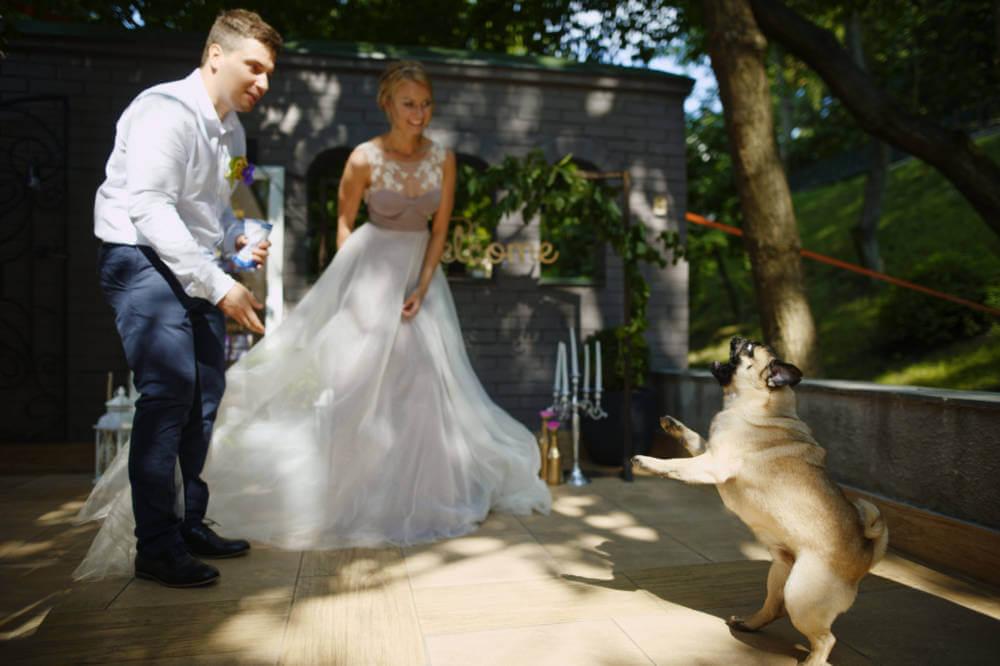 "ОЛЕГ И НАСТЯ ""COOL WEDDING"" фото 43 1"