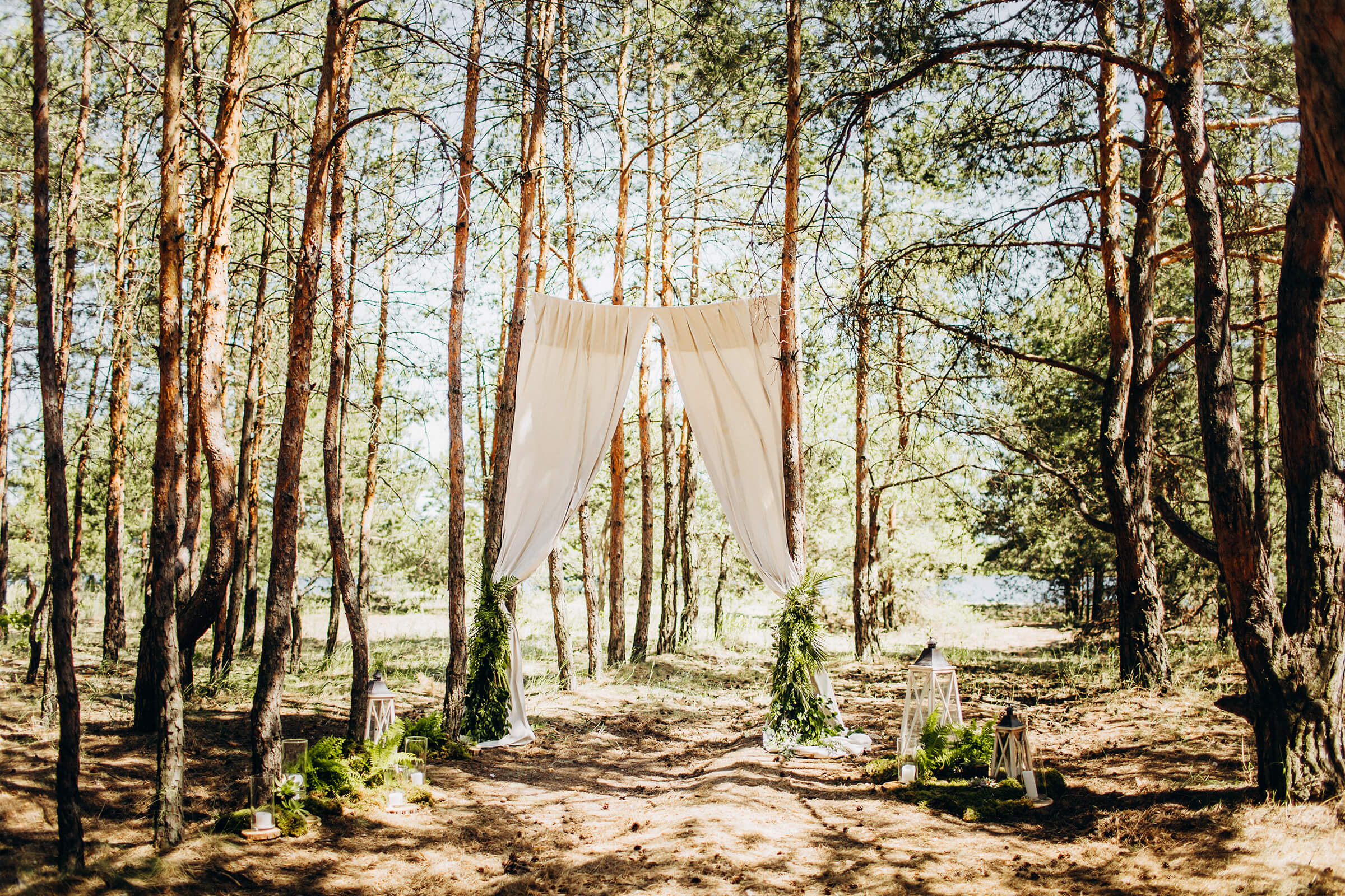 """WEDDING IN THE WOODS"" ДИМА И НАСТЯ фото AD 236"
